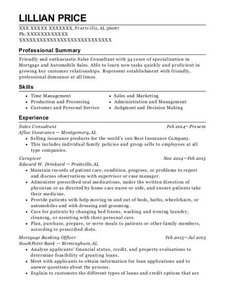 Sales Consultant resume format Alabama
