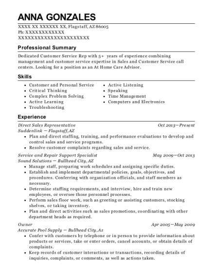 Direct Sales Representative resume format Arizona