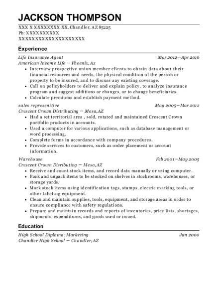 Life Insurance Agent resume template Arizona