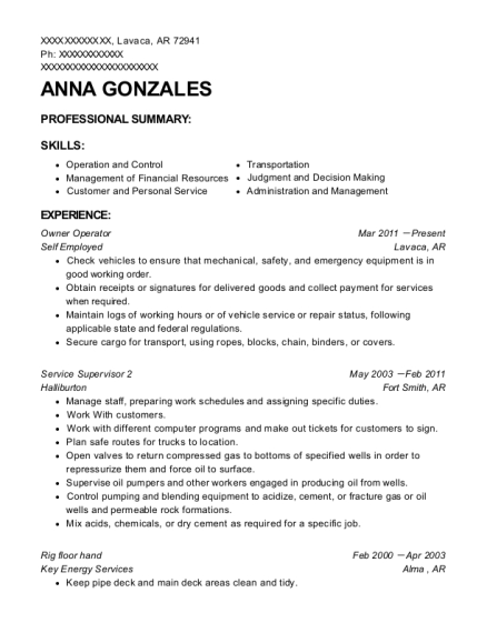 Owner Operator resume sample Arkansas