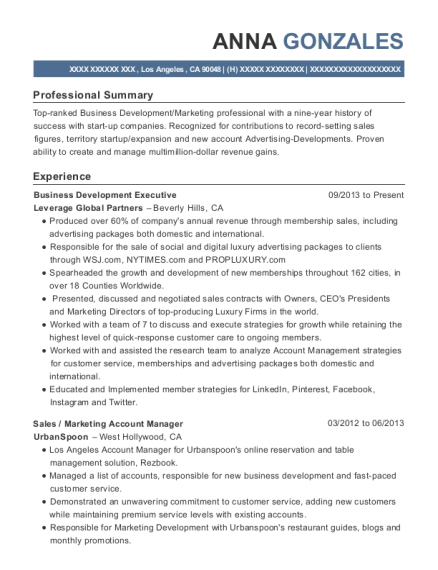 20 Best Business Development Executive Resumes Resumehelp