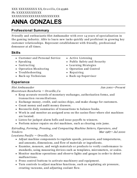 Slot Ambassador resume template California