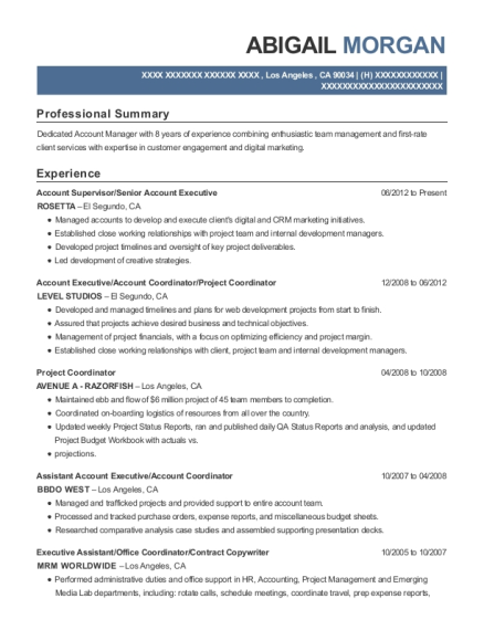 Best Assistant Account Executive Resumes