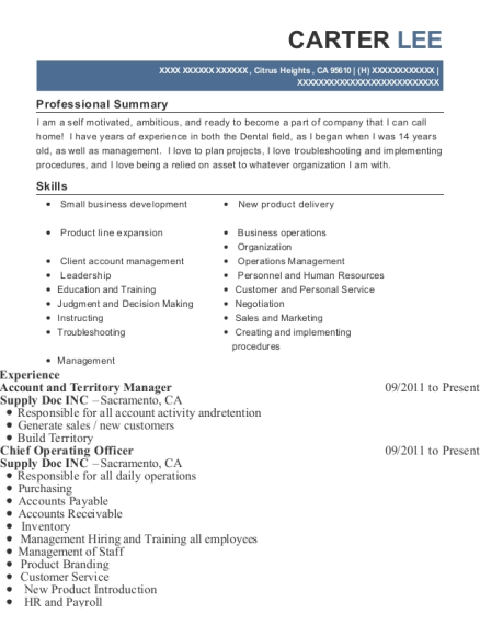 Account and Territory Manager resume format California