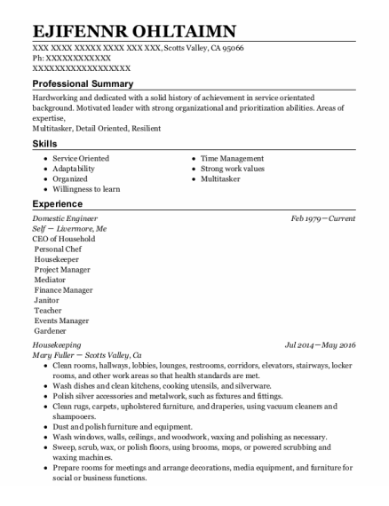 Domestic Engineer resume template California