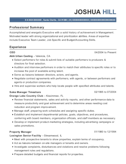 CEO resume template California