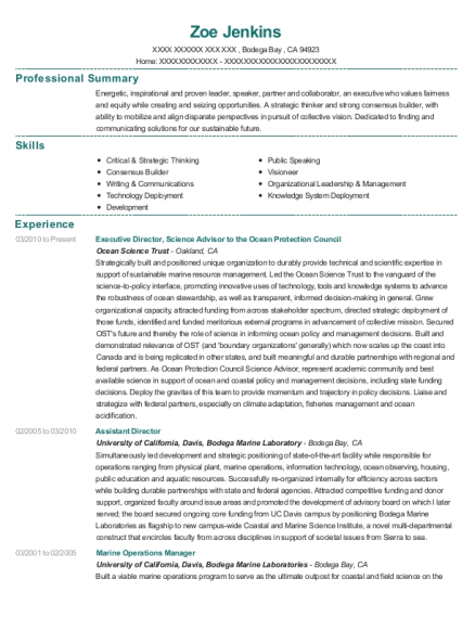 Executive Director resume template California