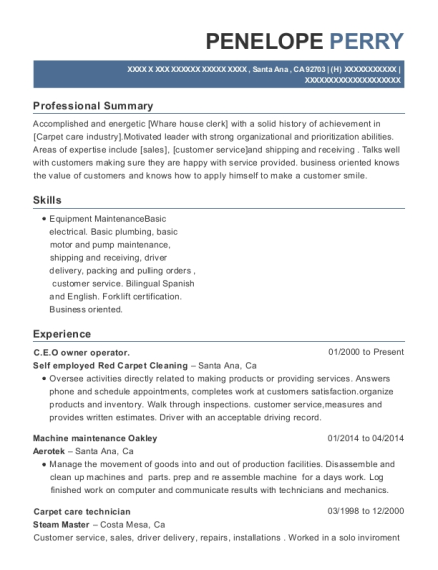 CEO owner operator resume template California