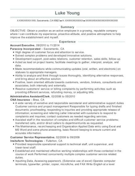 Account Executive resume template California
