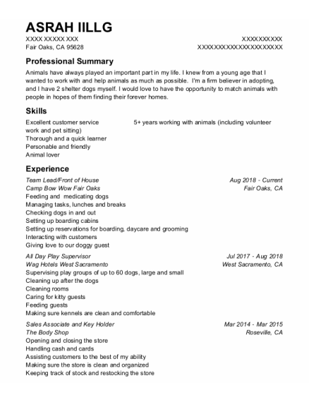 Team Lead resume sample California