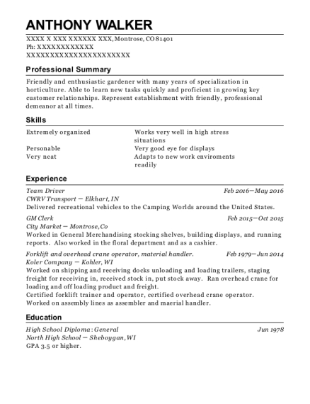 Team Driver resume sample Colorado