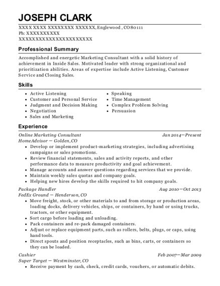 Online Marketing Consultant resume template Colorado