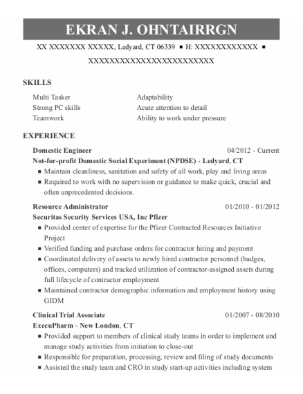Domestic Engineer resume sample Connecticut