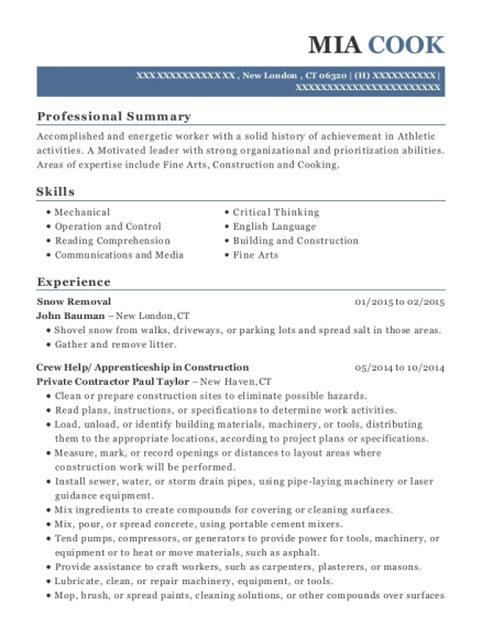 Snow Removal resume template Connecticut