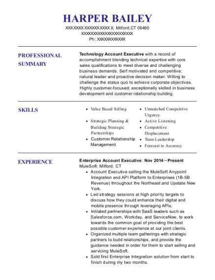 Enterprise Account Executive resume example Connecticut