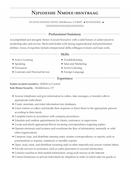 Senior Account Executive resume sample Connecticut
