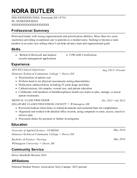 ADN RN Clinical Experience resume template Delaware