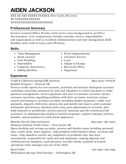 Credit & Collection Analyst resume format Delaware