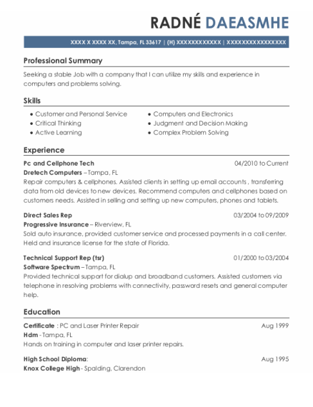 Direct Sales Representative resume template Florida