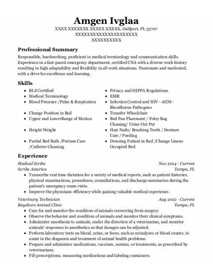 Medical Scribe resume example Florida