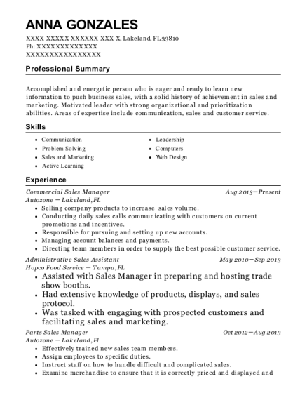 Commercial Sales Manager resume example Florida