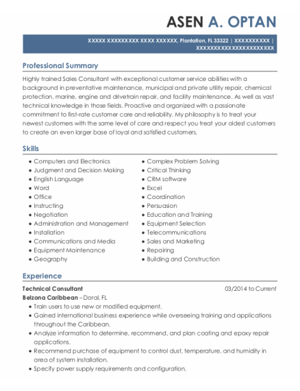 Technical Consultant resume example Florida