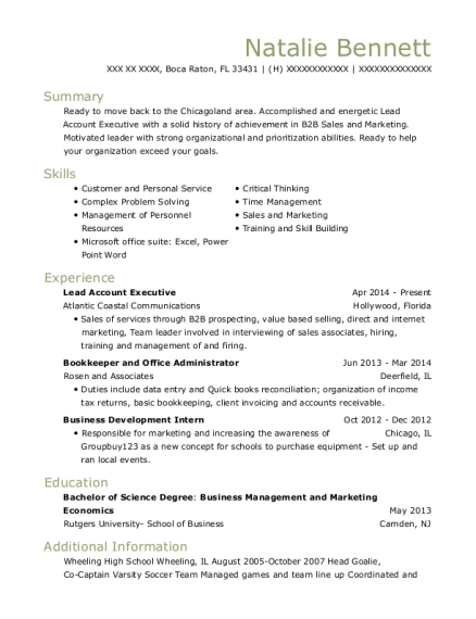 Lead Account Executive resume format Florida
