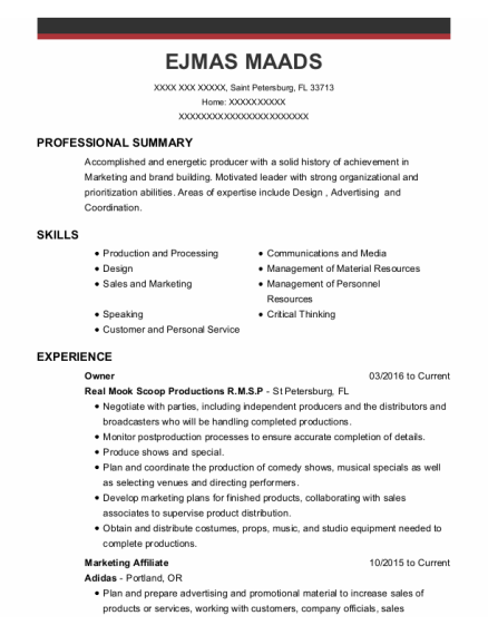 Owner resume template Florida