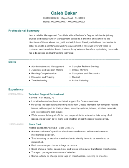 Technical Support Professional resume example Florida