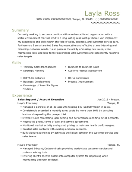 Sales Support resume example Florida