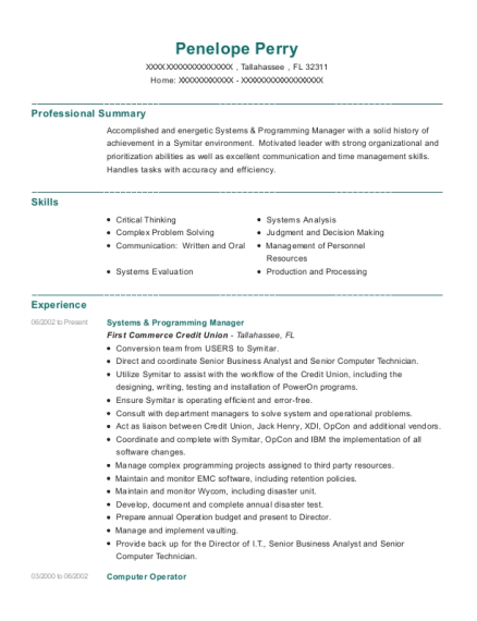 Systems & Programming Manager resume example Florida