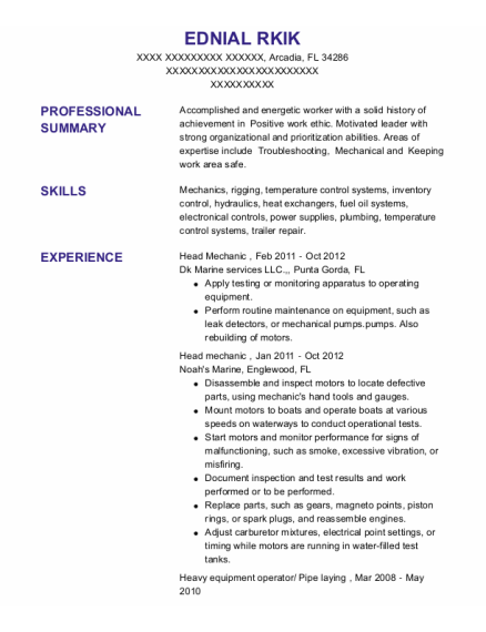 Head Mechanic resume template Florida