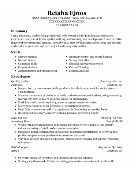 Quality Auditor resume template Georgia