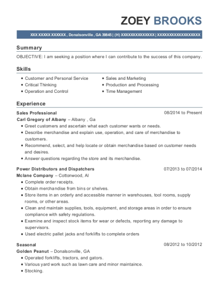 Sales Professional resume example Georgia