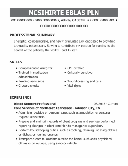 Direct Support Professional resume example Georgia