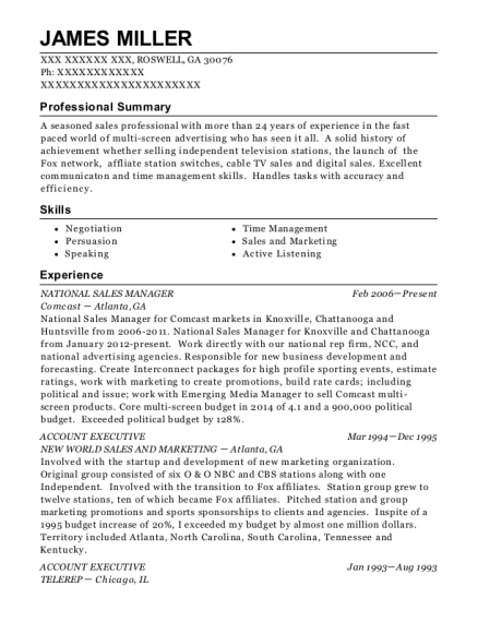 National Sales Manager resume template Georgia