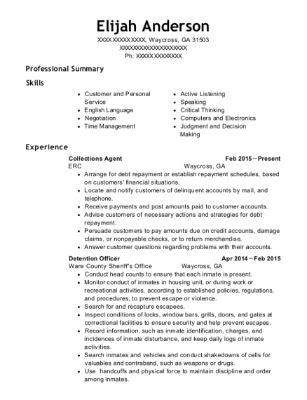Collections Agent resume example Georgia