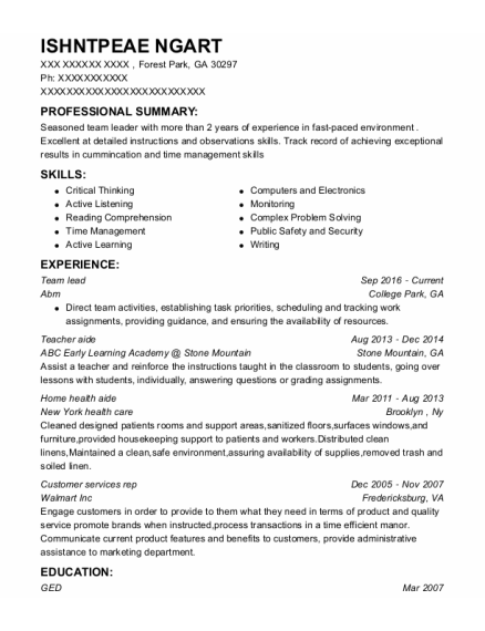 Team Lead resume example Georgia