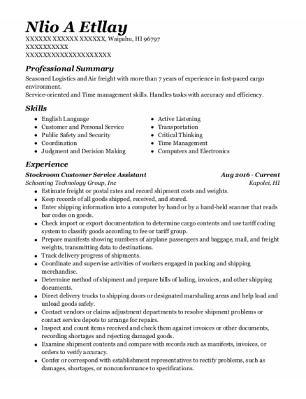 Air Freight Agent resume example Hawaii