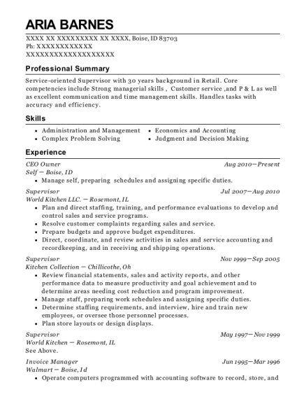 CEO Owner resume template Idaho