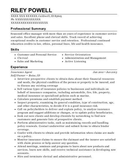 Insurance Agent resume format Idaho