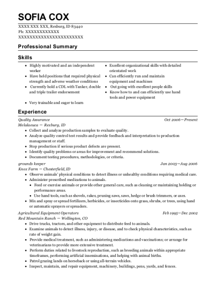 Quality Assurance resume example Idaho