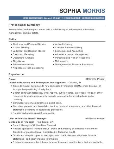 Owner resume sample Idaho