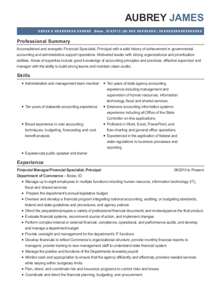 Financial Manager resume example Idaho