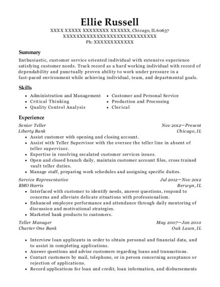 Senior Teller resume template Illinois
