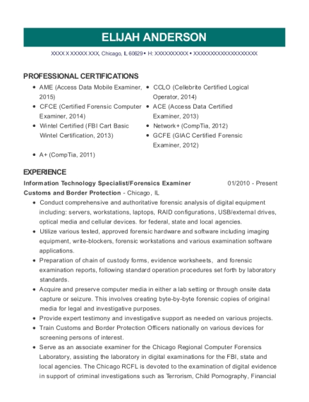 Information Technology Specialist resume example Illinois