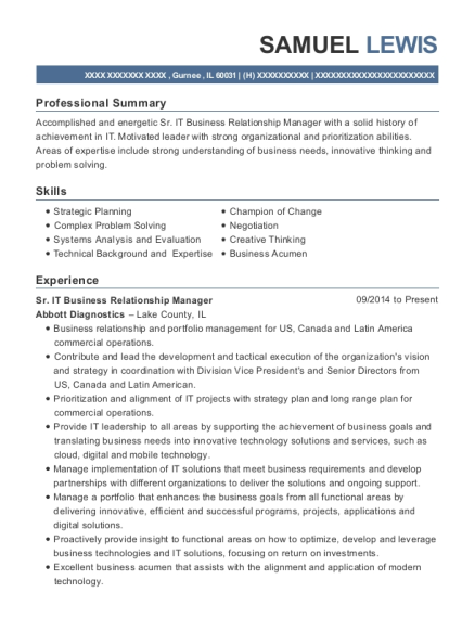 Sr IT Business Relationship Manager resume template Illinois