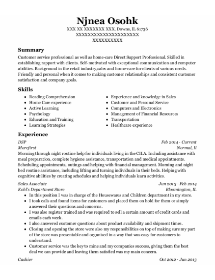 DSP resume template Illinois