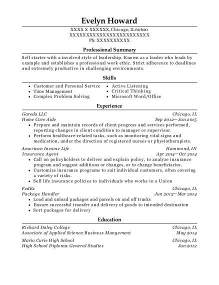 Home Care Aide resume example Illinois