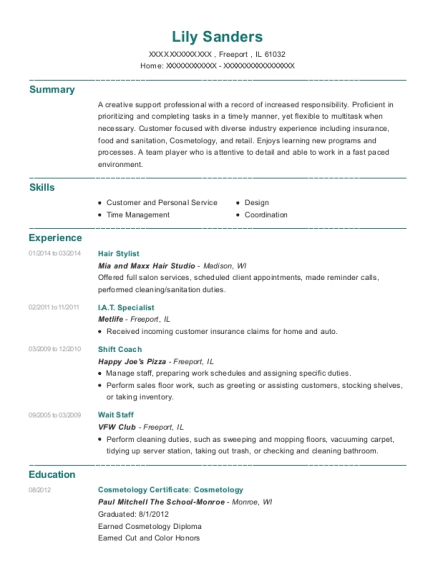 Hair Stylist resume format Illinois